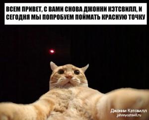 1389368881_ycdo1f0tg5s